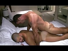 wild gay xxx videos. tube porn